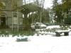 cross-in-winter